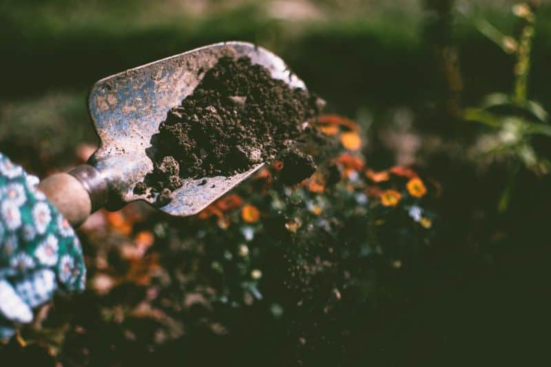 things-to-consider-when-installing-a-green-roof-1-adding-soil-pexels