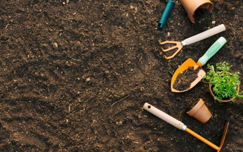 useful-gardening-tips-2-soil-quality