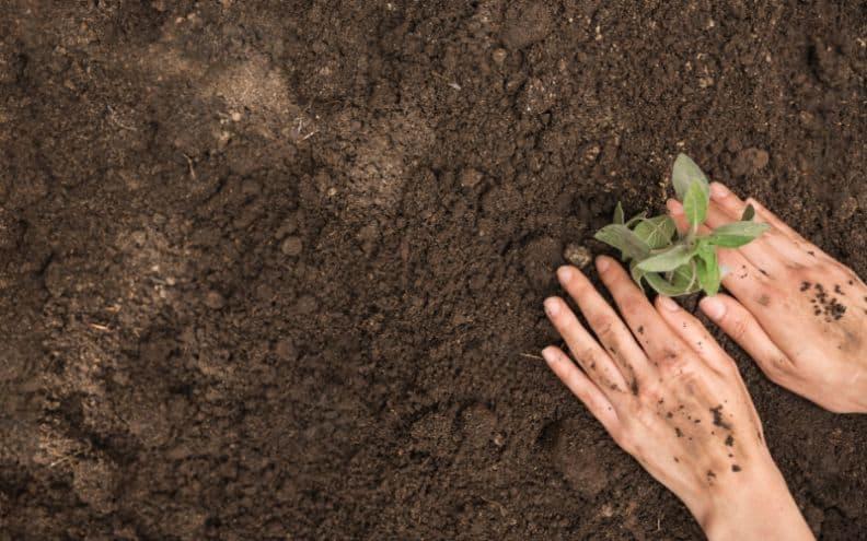 useful-gardening-tips-3-ideal-soil-for-plants