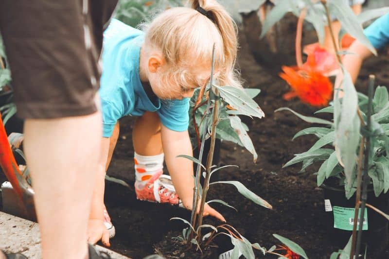 why-gardening-is-good-for-you-2-benefits-of-gardening
