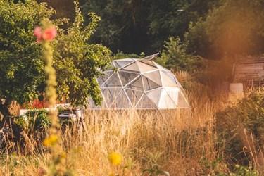 dome-greenhouse