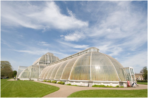 """Palm House"" by Chris Eason is licensed under CC BY 2.0"